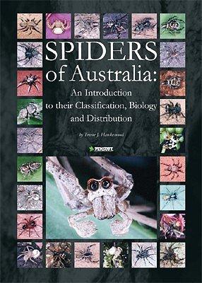 [SOAD] Images de titres de chansons Aus-spiders