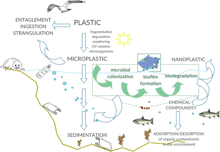 plastic cycle diagram