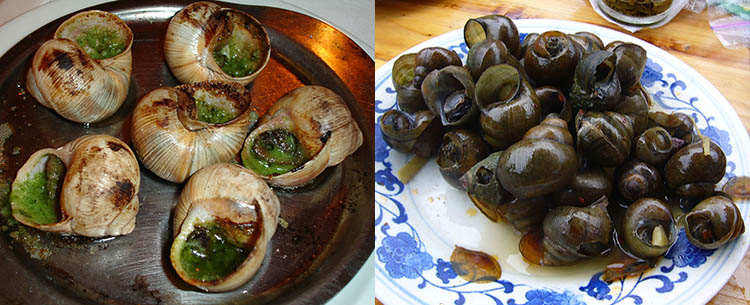 Cooked Snails