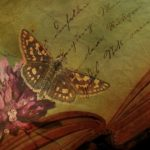 13 Best Books About Butterflies (That I've Actually Read)