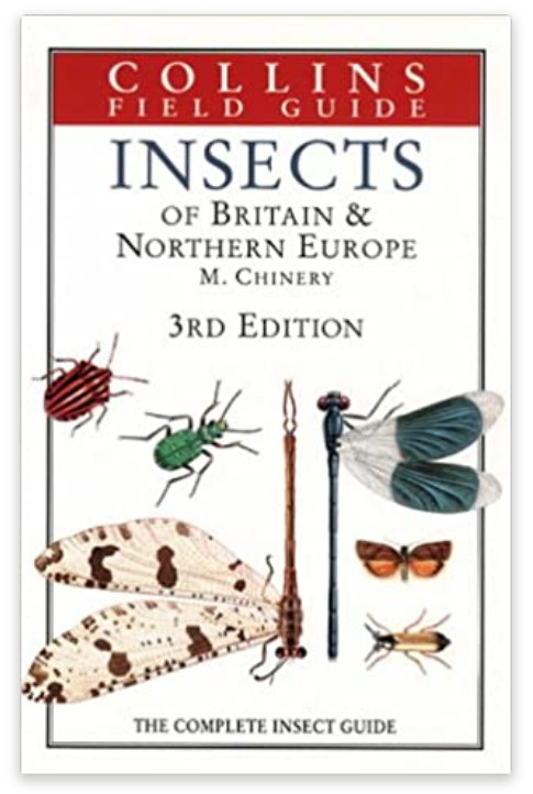 Insects of Britain & Northern Europe basic book
