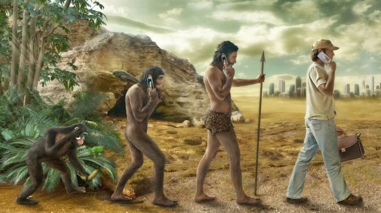 human evolution banner
