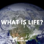 What Is Life? A Look At The Spectrum Of Living Things